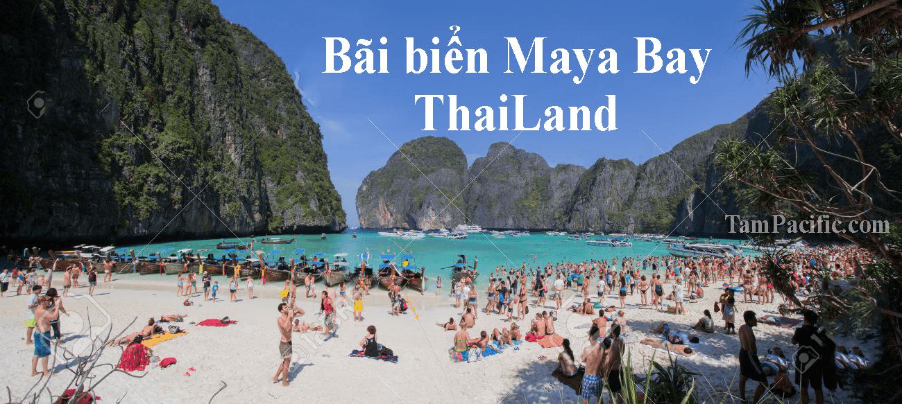 Có thể đóng cửa bãi biển Maya Bay của Thái Lan vô thời hạn để hồi phục