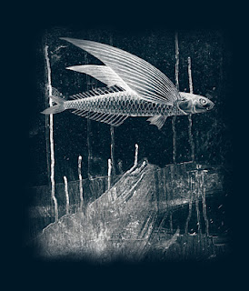 https://www.venusartprints.com.au/collections/garden-of-delights/products/art-prints-flying-fish-design-np215