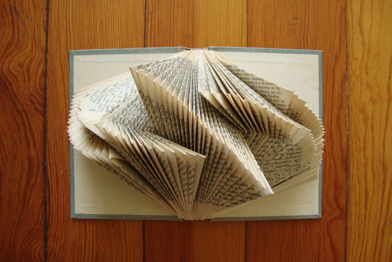 Looking-glass Books: Literary Origami