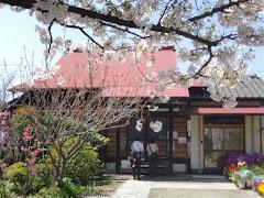 鎌倉・向福寺