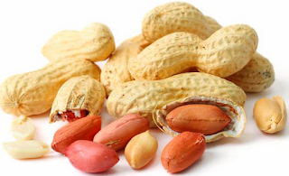 Kacang tanah obat pembesar payudara