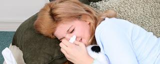 indoor allergy
