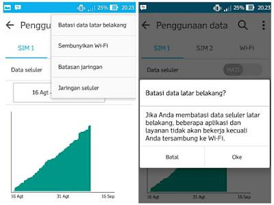 Batasi data latar belakang