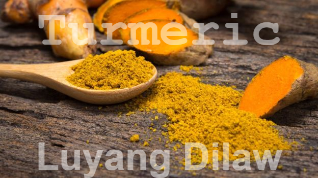 The Benefits of Luyang Dilaw (Turmeric) to our Body