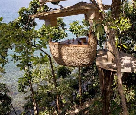 tree-top dining restaurant