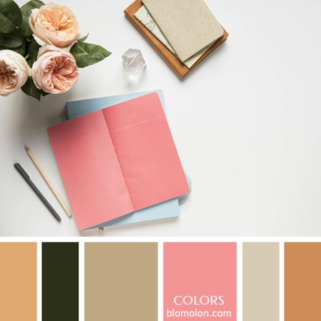 variedad_en_color_paletas_de_colores_19