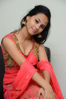 Actress Aasha Rakul Pictures in Red Long Dress at Vetade Puli Audio Launch  0095
