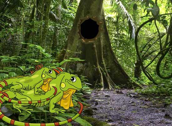 Iguana Forest Escape Juegos Solución
