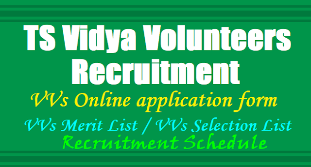 TS Vidya Volunteers Recruitment 2019,TS VVs Online application form 2019,VVs Merit List,VVs Selection List, VVs Results,VVs Recruitment Schedule