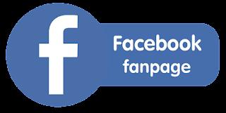 Facebook Fan Page Category