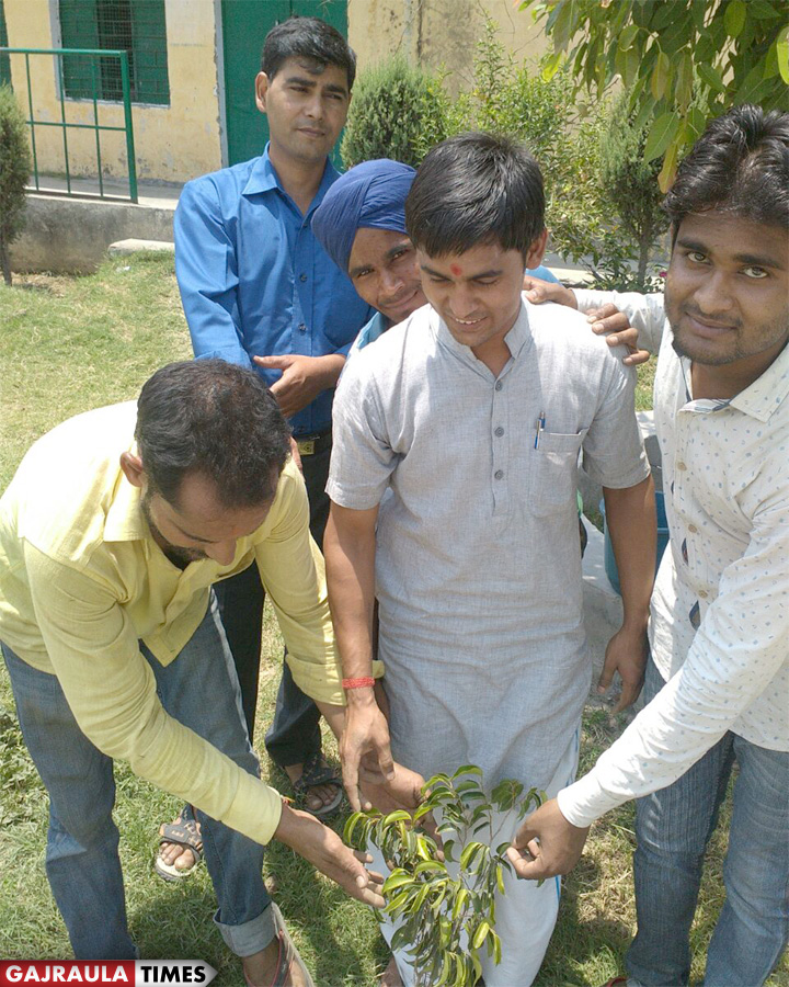 plantation-at-gajraula