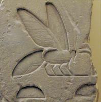 jeroglifico abeja