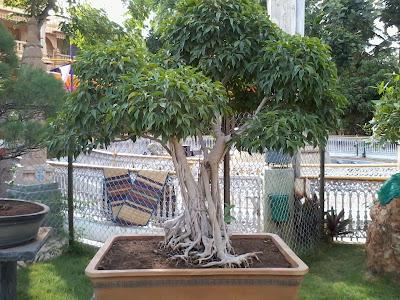 Avadhoota Datta Peetham - SGS Ashrama at Mysore