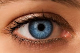 How Can Superfoods Protect Your Vision