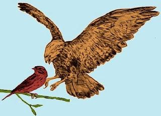 La lepre e il passero saputello (Fedro)