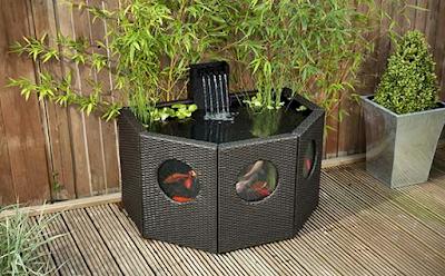 Contoh Taman Dalam Rumah Minimalis Dengan Kolam Ikan Mini berbentuk aquarium Portable yang Unik