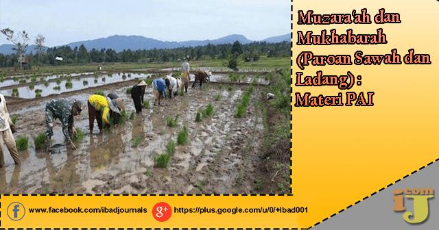 Muzara'ah dan Mukhabarah (Paroan Sawah dan Ladang) : Materi PAI