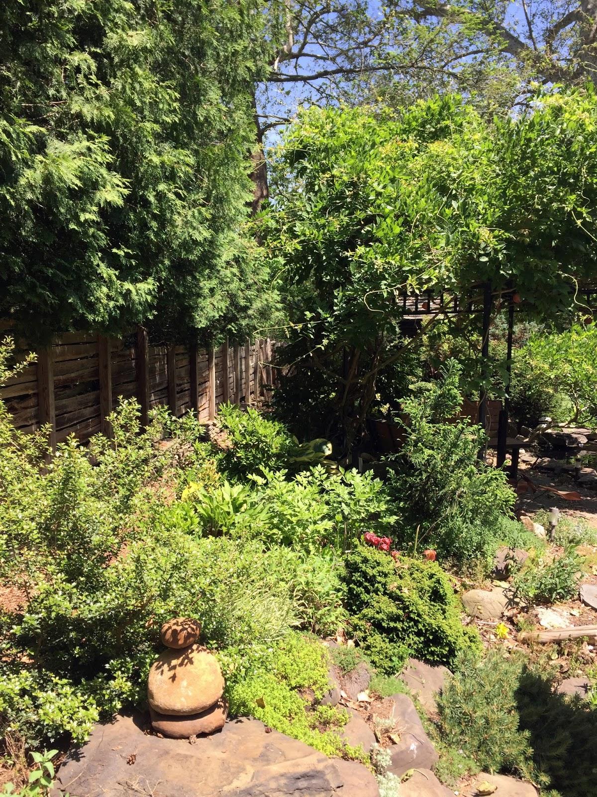 Rosemary\'s Sampler: Boukakuan Japanese Tea House & Garden