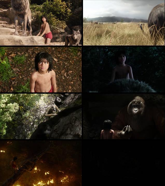The Jungle Book 2016 Dual Audio Hindi 720p BluRay