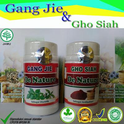 trick mengobati kencing nanah baru herbal tradisional de nature merangin info 082221671001