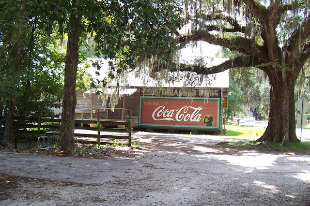 Coke Cola Sign-moss covered tress-2032 x 1354-jpg