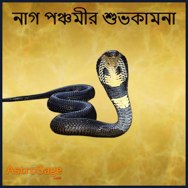 Nag Panchami holo Nagder jonyo nibedito ekti utsob.