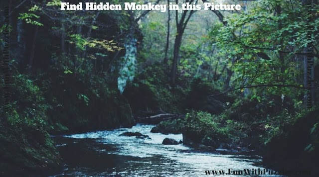 Picture puzzle to find hidden animal