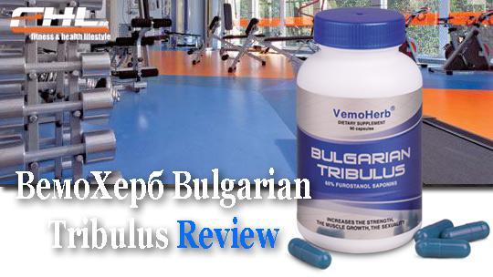 Булгариан трибулус вемохерб е един от най-добрите трибестани на пазара