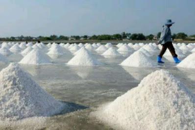 Pusat Grosir Pengolahan Aneka Garam Di Indonesia