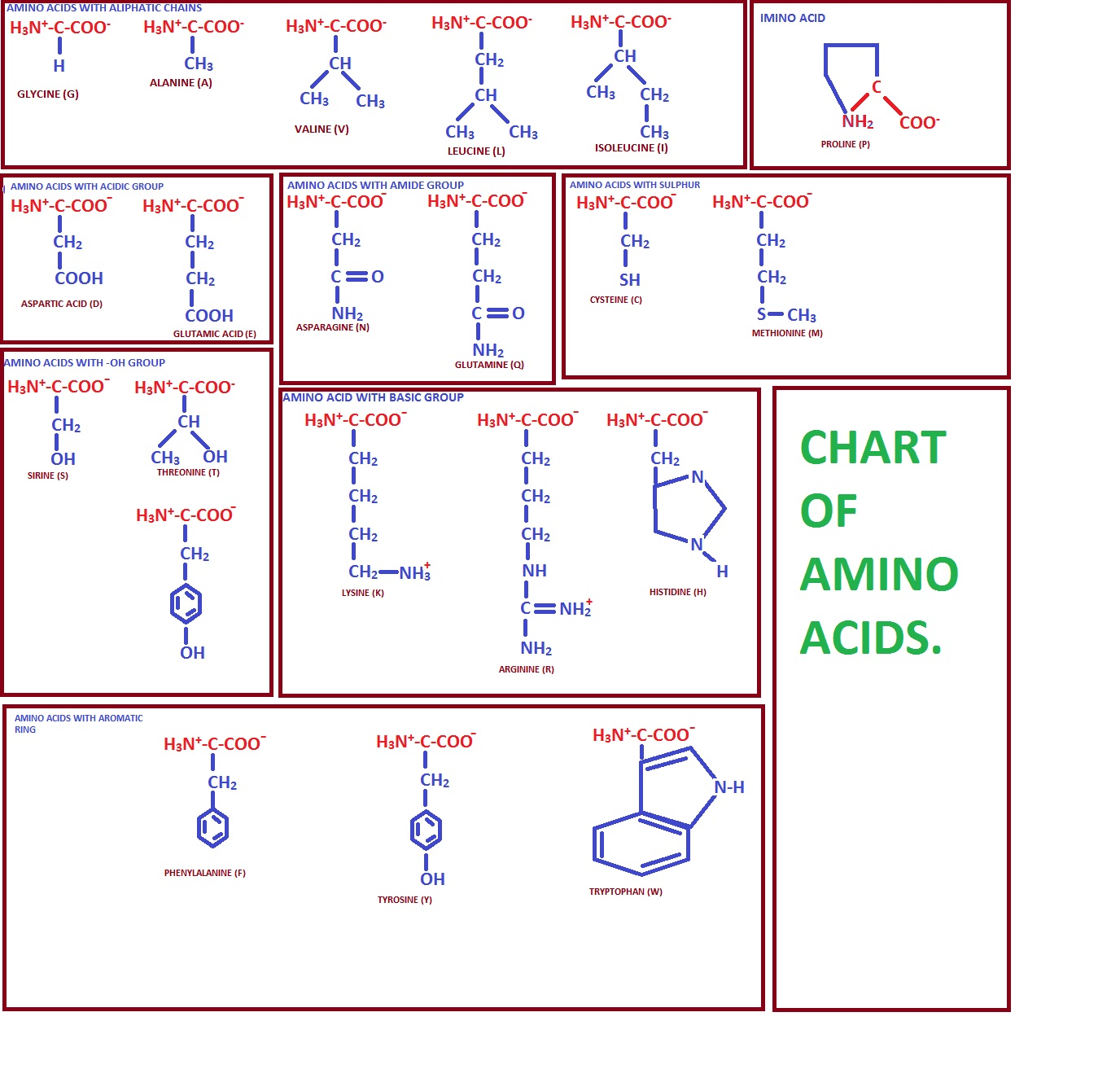 Shelford Tutorials Classification Of Amino Acids
