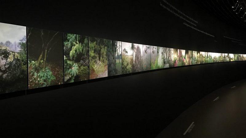 """Exposición """"Jardins"""" en el Grand Palais de París"""