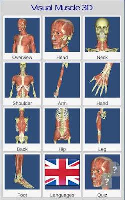 تنزيل Visual Anatomy 3D | Human APK