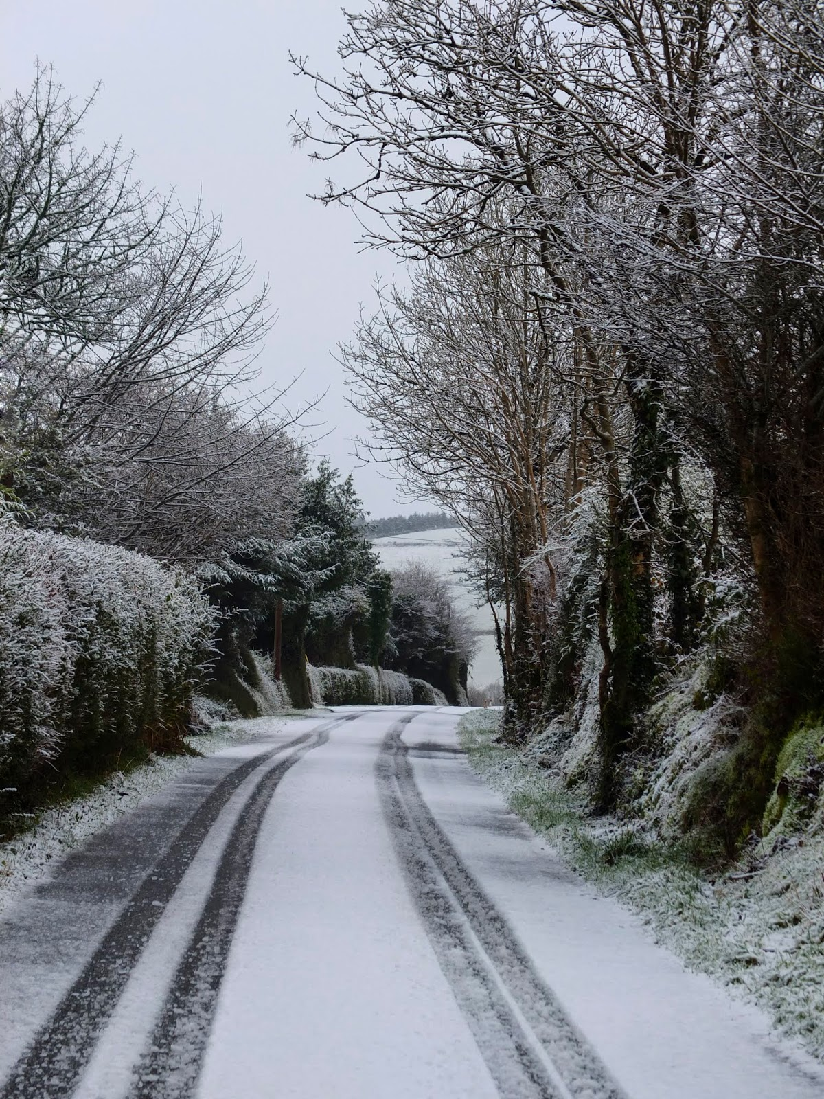 Tyre tracks in the snow on a countryside road in North County Cork.