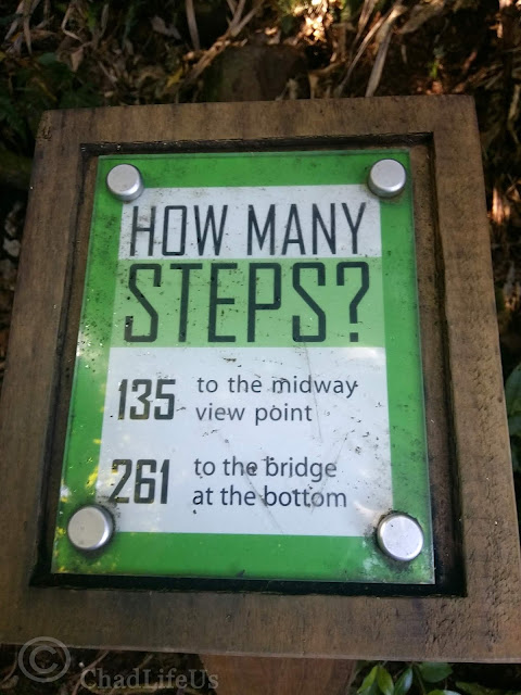 How many steps to the bottom