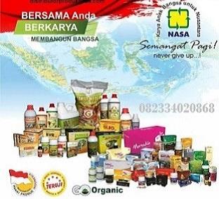 AGEN NASA DI Air Padang Bengkulu Utara - TELF 082334020868