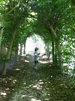 Girl in path with trees joining branches overhead at Williamsburg possibly