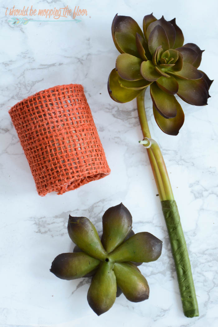 DIY Succulent Napkin Rings | Make these simple napkin rings (they start from a paper towel roll) to give your holiday table a little extra special touch!