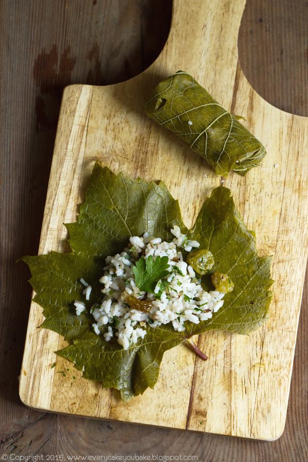 dolmades - greckie gołąbki w liściach winogron