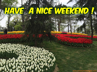 have a nice weekend image for girlfriend