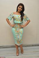 Nikki Galrani in Cute Dress Dress At Marakathamani Success Meet ~  Exclusive 030.JPG
