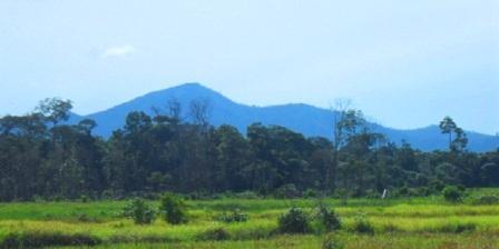 taman nasional gunung palung kalbar taman nasional gunung palung kantor kabupaten ketapang kalimantan barat taman nasional gunung palung kayong utara