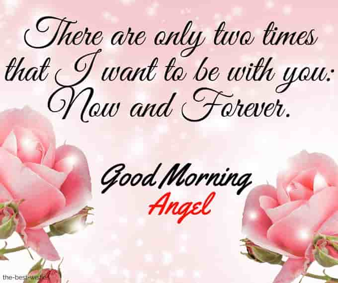 good morning angel cards