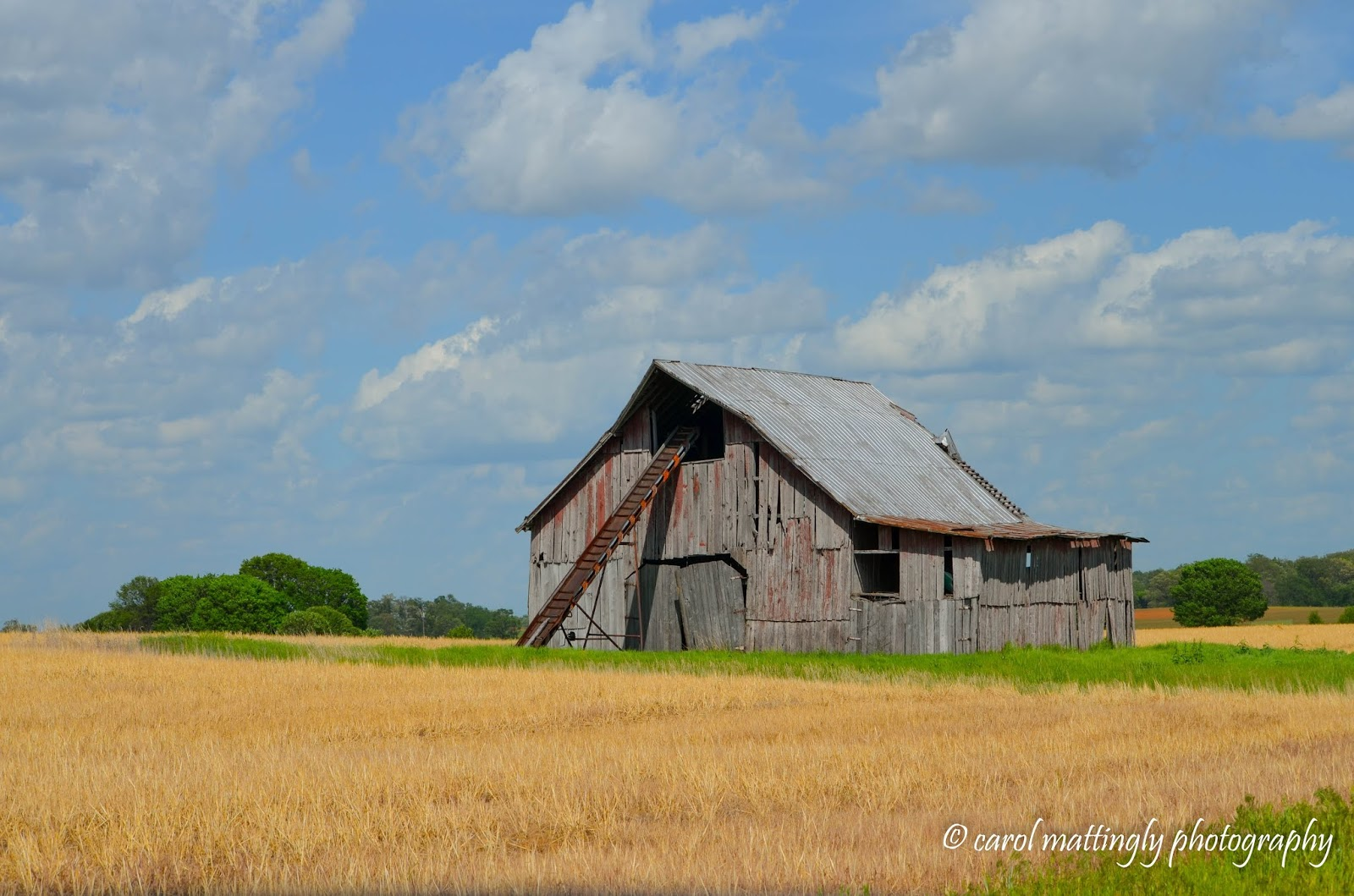 carol mattingly photography a weathered barn story