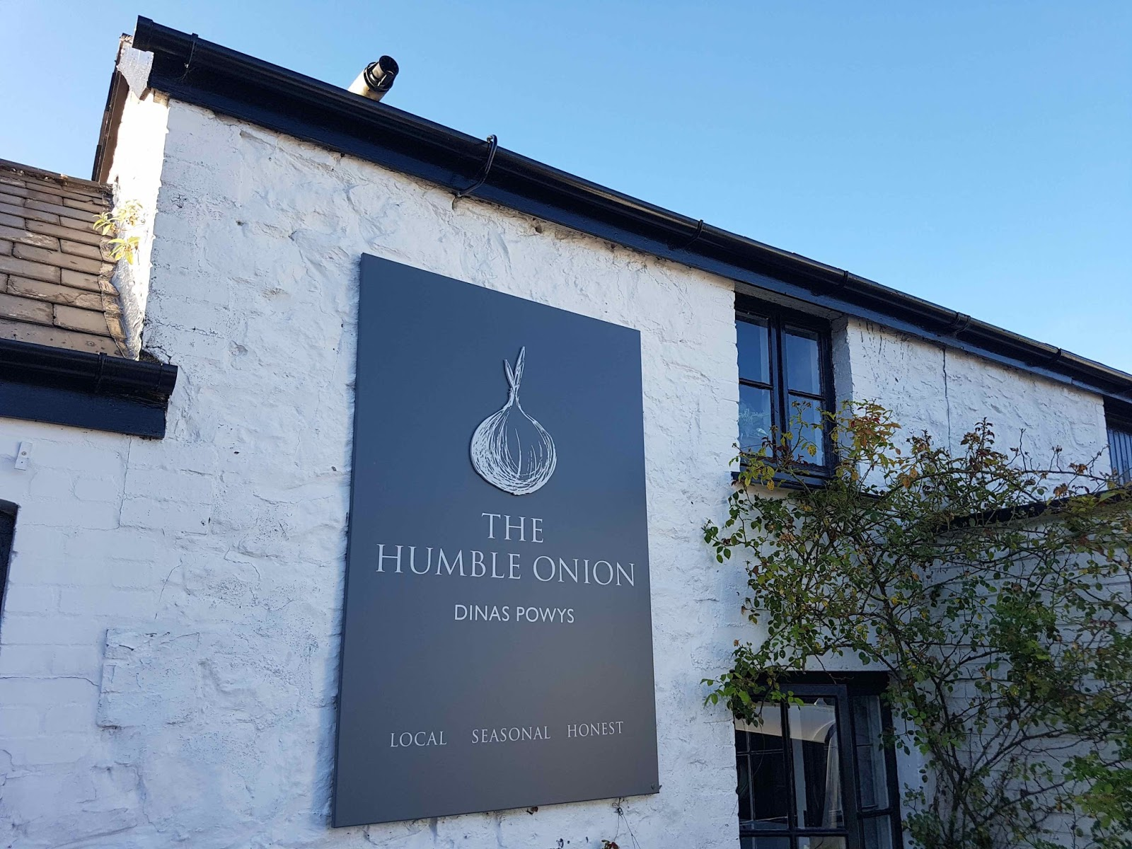 GourmetGorro: The Humble Onion, Dinas Powys, Vale of Glamorgan ...
