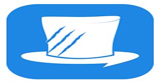 MagicTiger logo
