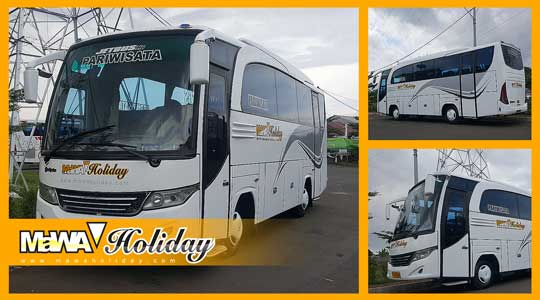 Bus pariwisata mawa holiday