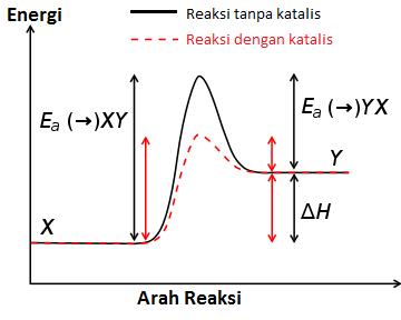 Energi aktivasi yakni energi minimum yg harus ada pada sistem kimia  utk melangsungk Apa itu Energi Aktivasi ?