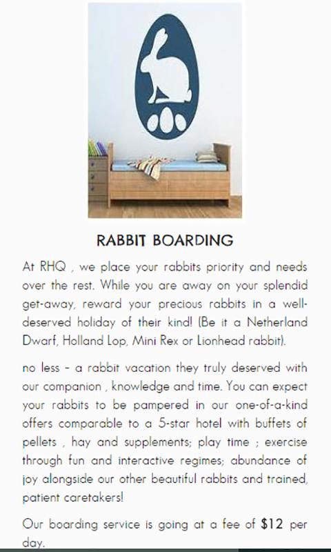 Rabbit boarding in Singapore