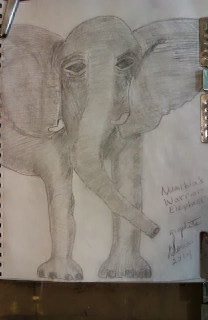"""Namibia Warrior Elephant"" graphite sketch by Gloria Poole; yr 2014"