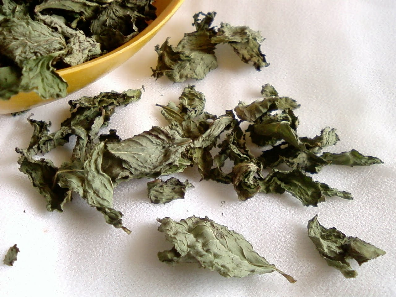 Image result for dried mint leaves